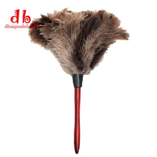 Feather Soft Feathers Duster From Furniture To Fan Blades DBM