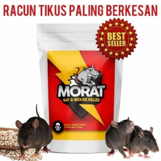 MORAT  RACUN TIKUS POWER NO 1