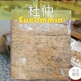 TTH 🏋️‍♂️Euconmia 杜仲 600g 天天草药 Herbs Herbal YC
