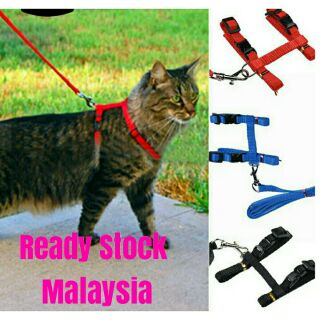 Pet Strap Harness / Cat Collar