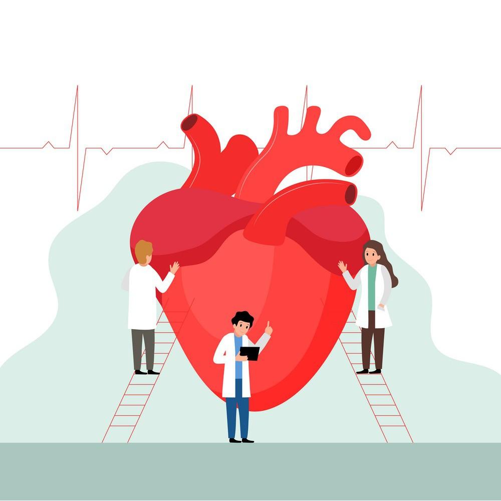 GML:Coronary Artery Disease 冠脉宁:冠心病