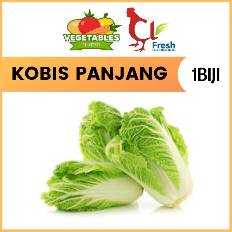 Kobis Panjang / Long Cabbage 1Nos