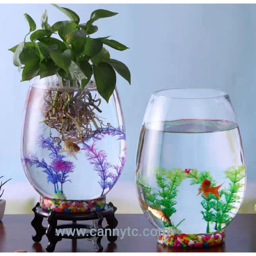 Glassware Aquarium , Terrarium Vase, Glass Vase for Decoration (1 Set)