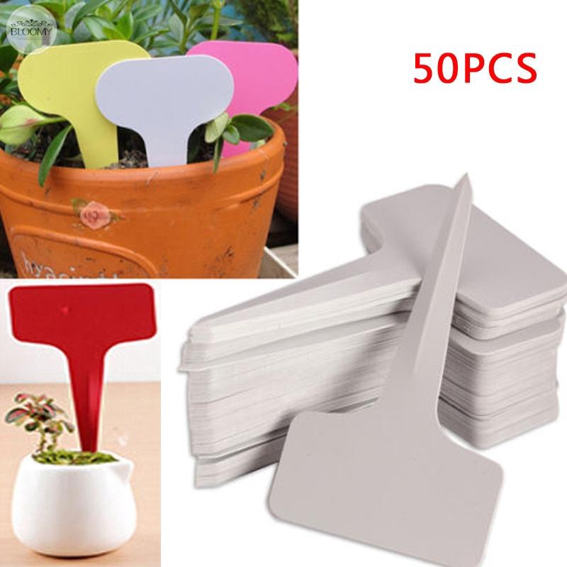 50//100X Plastic Plant Labels Garden Markers T-Type Gardening Name Tags Herbs Pot