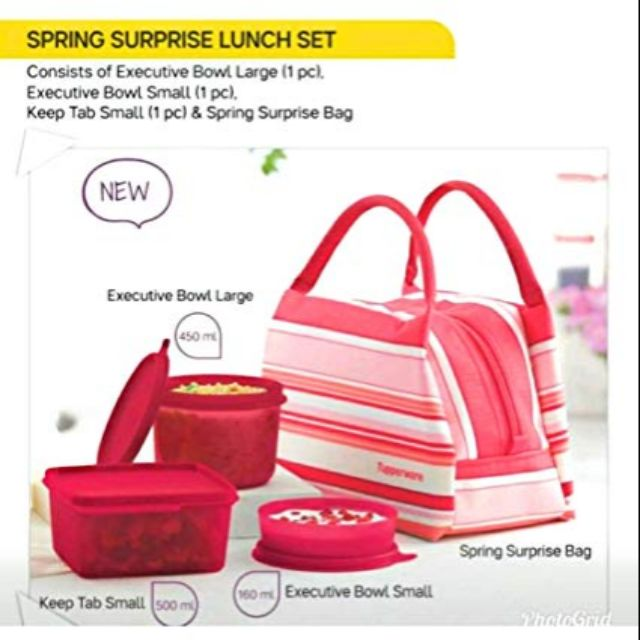🎉CLEARSTOCK🎉Spring Surprise Lunch Set