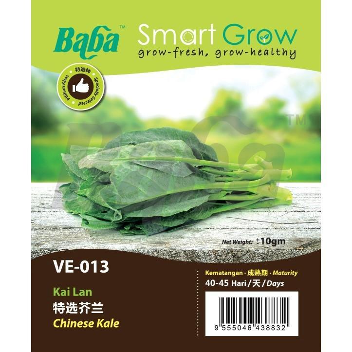 [IGL] BABA SMART GROW SEEDS / BIJI BENIH / VE-013 CHINESE KALE @ KAI LAN