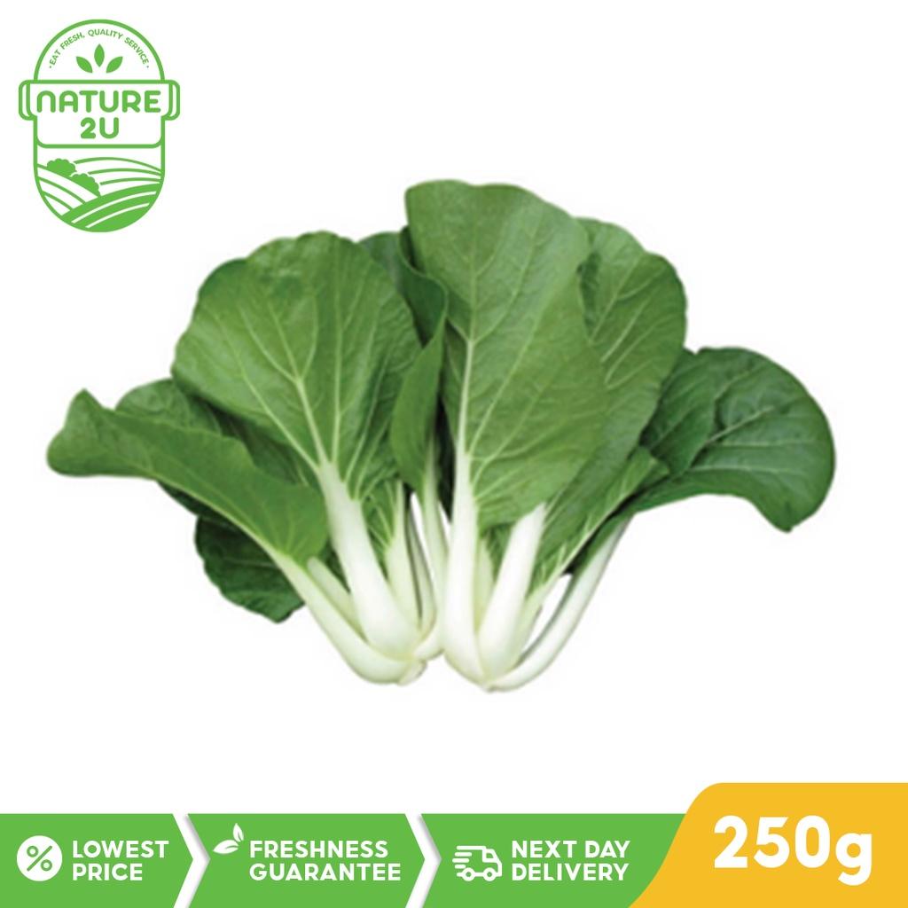 Fresh Vegetable - Nai Pak Choy (250G)