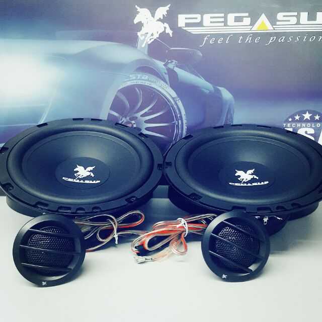 US Thunder Audio UST-W100XP 10\' subwoofer Xpower Series   Shopee ...