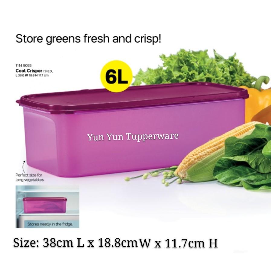 Tupperware Cool Crisper (Modular Mates) 6.0L