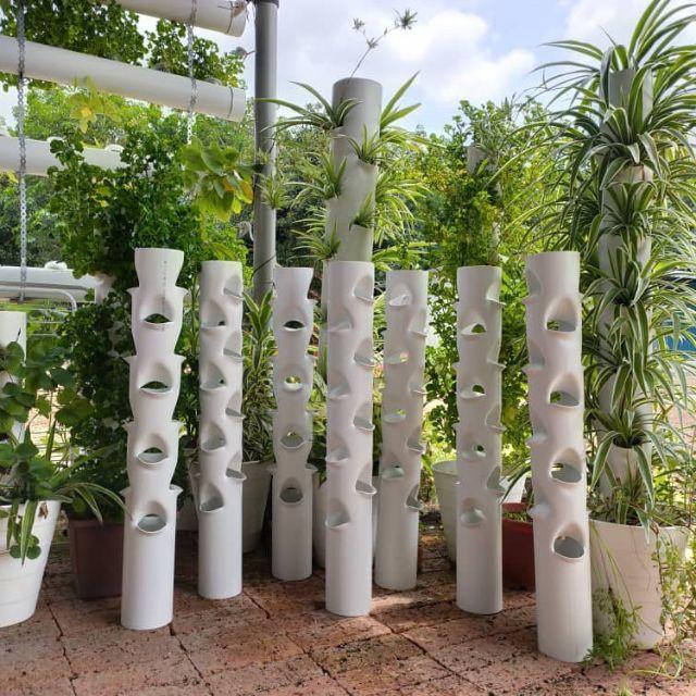 Vertical Vase Diy 16 Holes 10pcs Pasu Putih 16 Lubang Vertical Farming 10 Pcs Shopee Malaysia