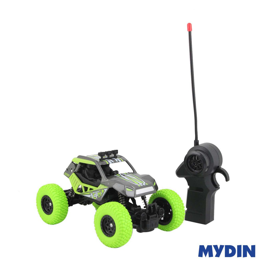 RC High Speed Storm Toy Car