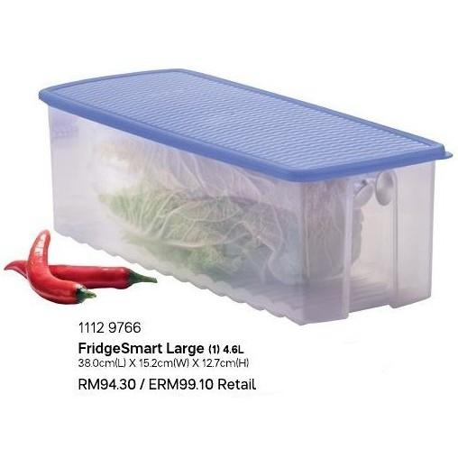 Tupperware FridgeSmart Large 4.6L