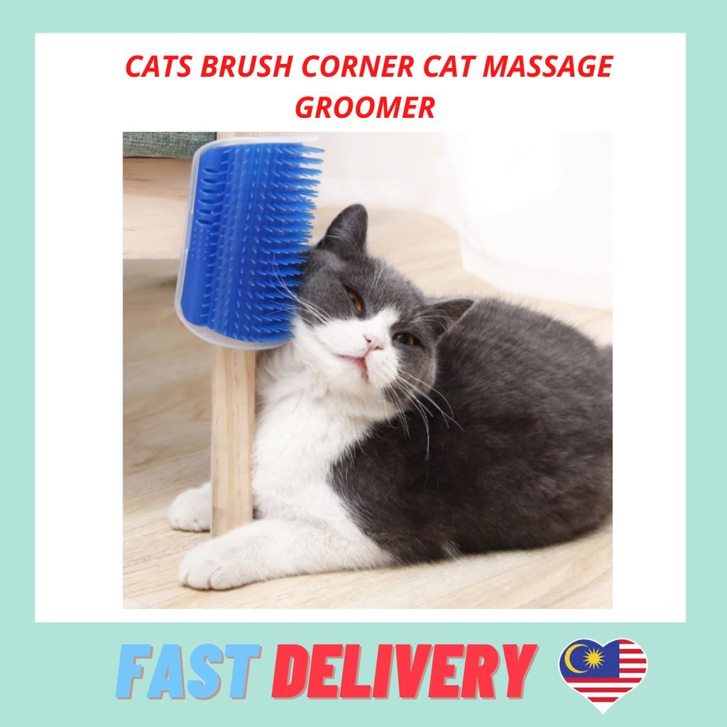 Cats Brush Corner Cat Massage Groomer Tickling Comb Brush Catnip Rubs Cat Self Groom Pet Cat Brush