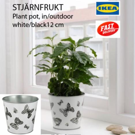 Ikea Stjarnfrukt Plant Pot Pasu Bunga Indoor Outdoor Shopee Malaysia