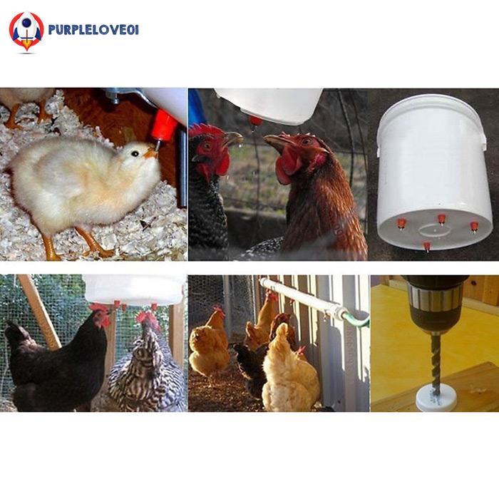 50Pcs Chicken Feeder Water Nipple Drinker Duck Hen Poultry 360° Screw in Style