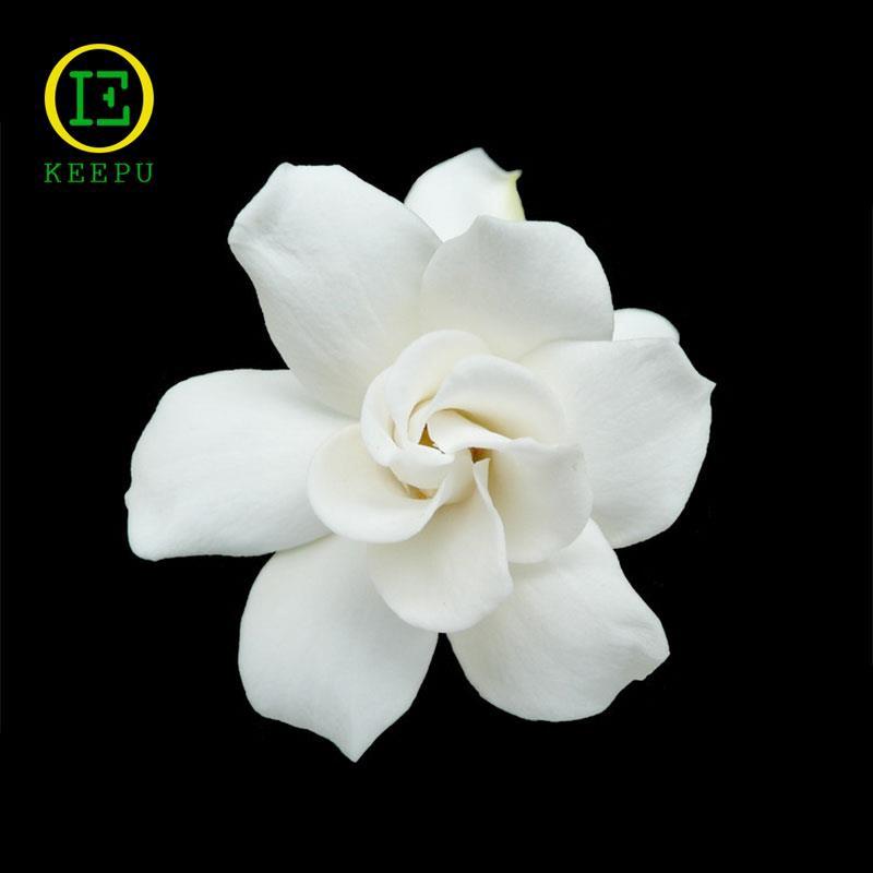 100pcs Gardenia Cape Jasmine Seeds Fragant Beautiful White Garden Flower De E7N2
