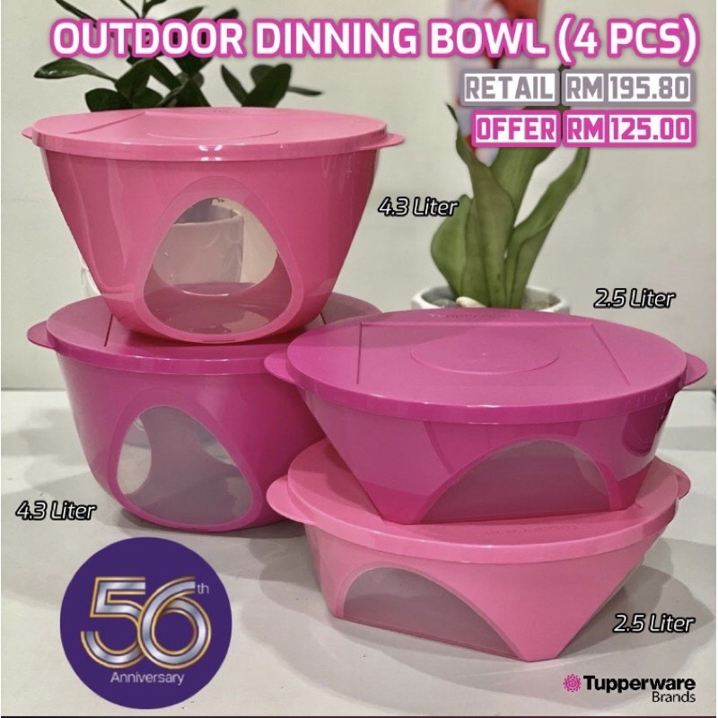 TUPPERWARE Outdoor Dining Bowl (1)