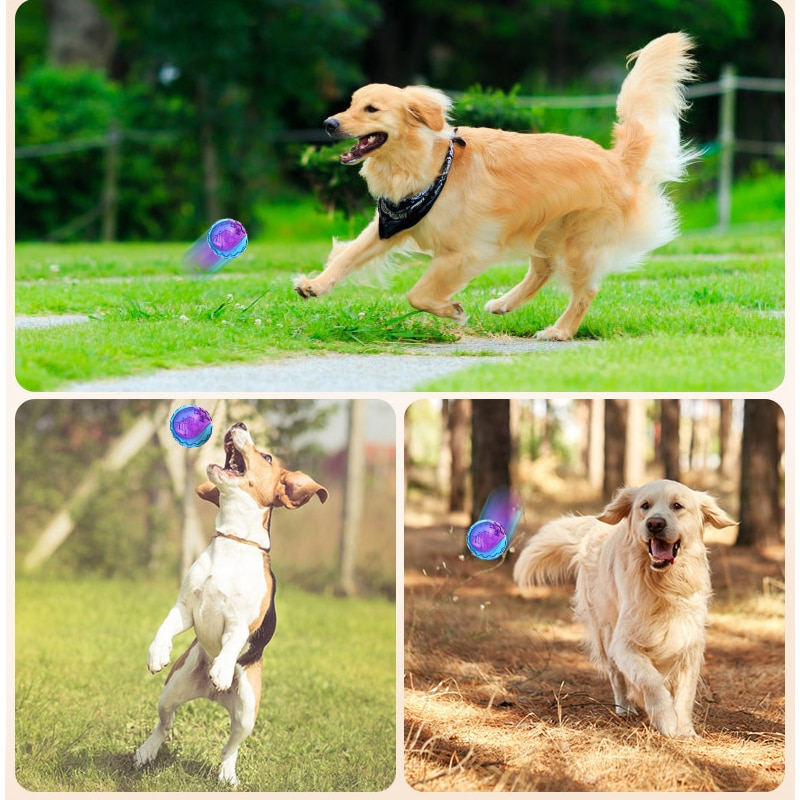 HOOPET Pet Dog Puppy Squeaky Chew Toy Sound Pure Natural Non-toxic Rubber  Outdoor Play Small Big Dog Funny Ball | Shopee Malaysia