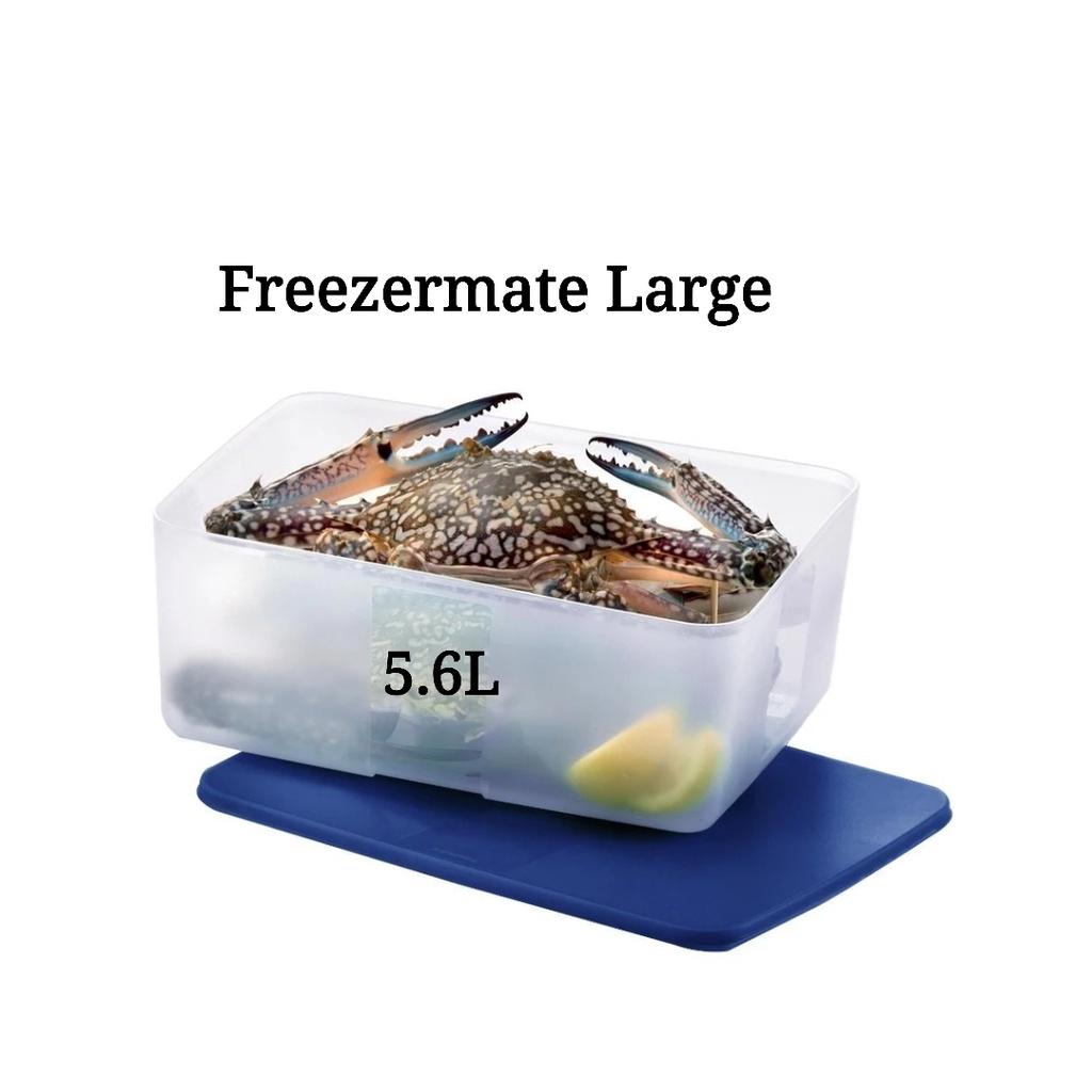 Tupperware Freezermate Large 5.6L (1) Dark Blue