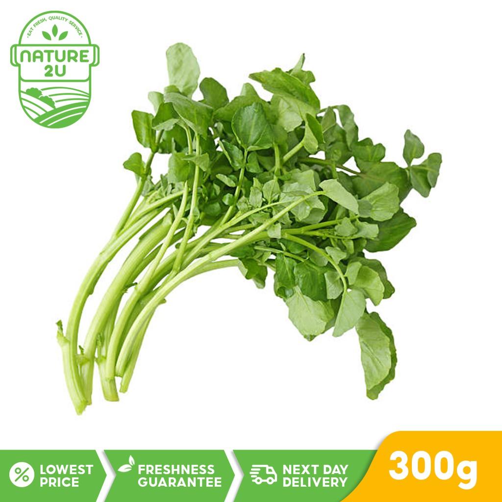 Fresh Vegetable - Watercress (300G)