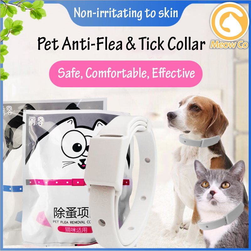 Pet Anti Flea Collar Flea Killer Kolar Kucing Kutu