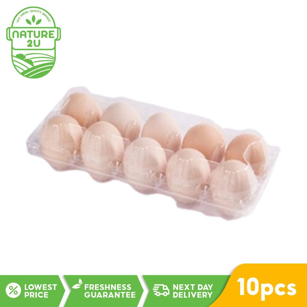 Fresh Kampung Chicken Egg (10pcs/ tray)