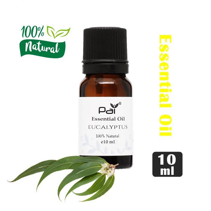 MALAYSIA: MINYAK TERAPI reduce inflammation and improve respiratory /PAI Essential Oil (Eucalyptus) 10ml