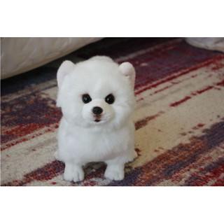 Simulasi Fabrik Yang Diimport Pomeranian Samoyed Tulen Boneka Anjing Putih Simulasi Boneka Anjing Shopee Malaysia