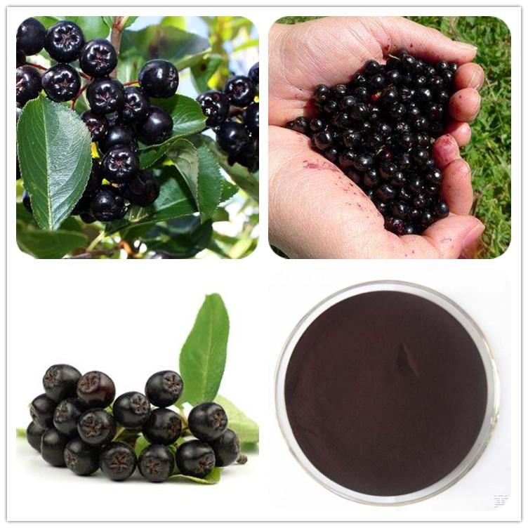 100 Pure Food Grade Maqui Berry Fruit Powder Antioxidants