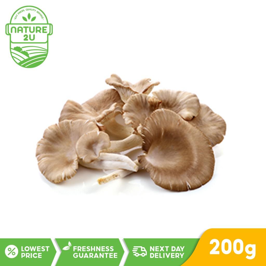 Fresh Vegetable - Mushroom Oyster (200g)