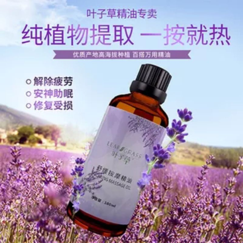 【Ready stock】Lavender massage essence oil Premium Grade Pure Lavender 玫瑰按摩精油薰衣草美容院面部刮痧身体推拿植物护肤油