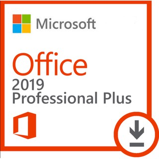 office 2010 professional plus license
