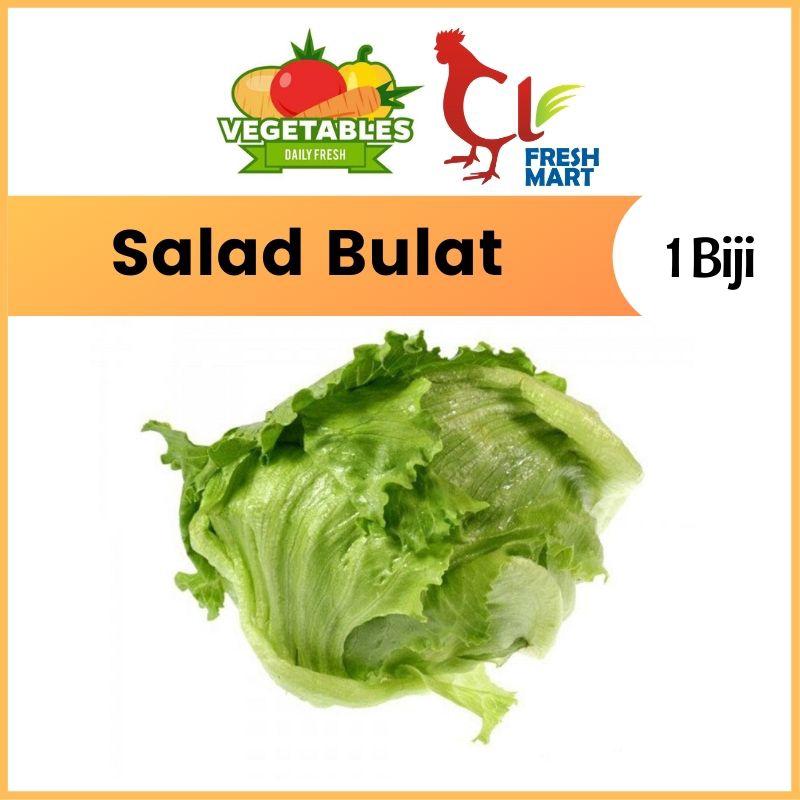 Fresh Iceberg Lettuce / Salad Bulat (1 Pc) Fresh Selected