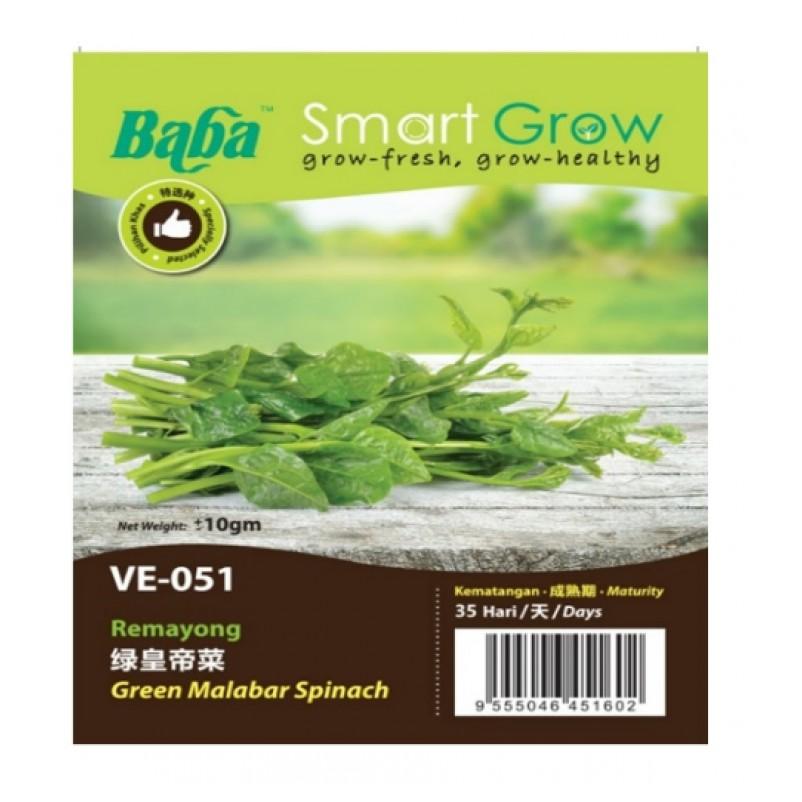 [IGL] BABA SMART GROW SEEDS / BIJI BENIH / VE-051 GREEN MALABAR SPINACH @ REMAYONG