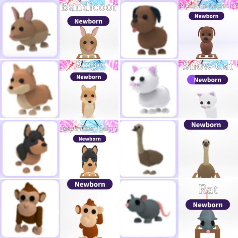 Roblox Adopt Me Pets Common Rare Shopee Malaysia