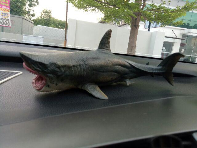 Megalodon Ancient Shark Wild Animal Figure Model Toy Collector Decor Best Gift