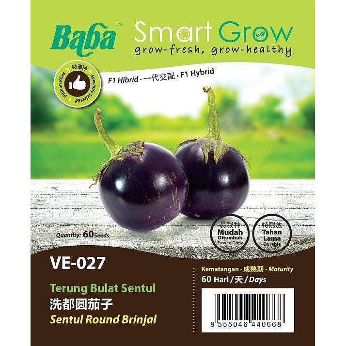 [IGL] BABA SMART GROW SEEDS / BIJI BENIH / VE-027 TERUNG BULAT SENTUL @ SENTUL ROUND BRINJAL