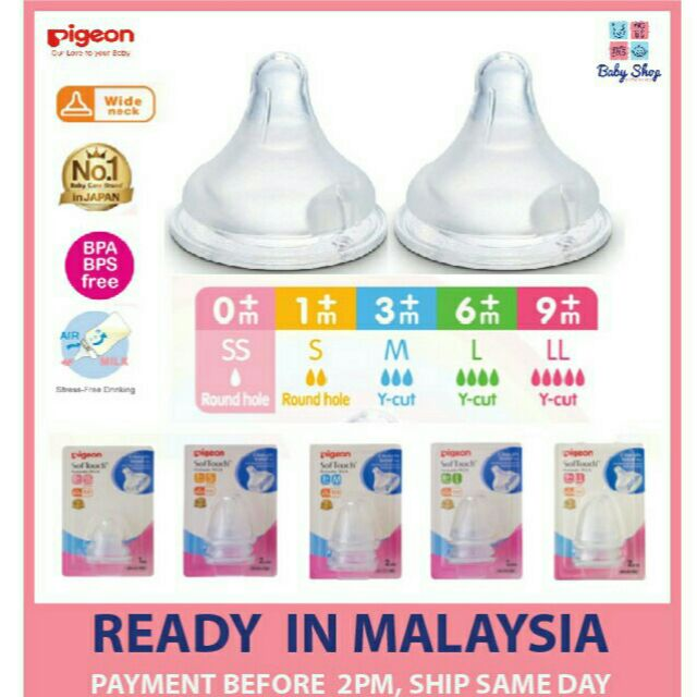 [R/stock] 2PCS PUTING PIGEON STANDART NECK | Shopee Malaysia