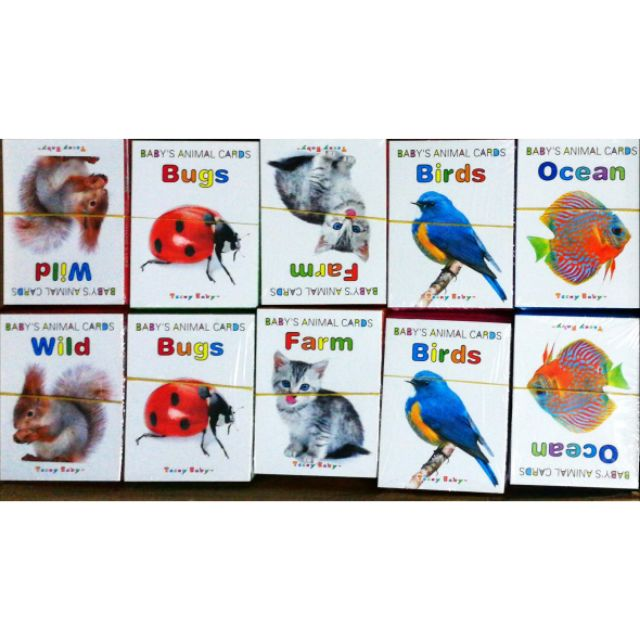 Children early age learning card (set of 5)
