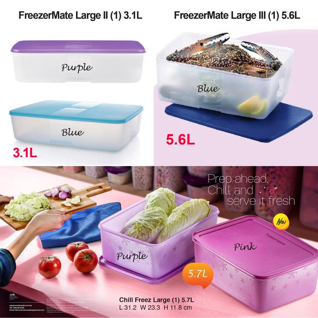 Tupperware FreezerMate Large II (3.1L) / FreezerMate Large III (5.6L) / Chill Freez Large 5.7L (Pink / Purple)