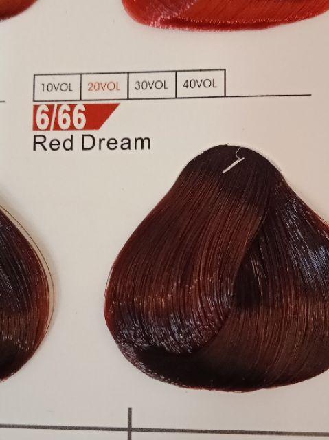 Fabaole color (Red Dream.6/66) 100ml foc peroxide cream 100ml(Red Dream.6/66)