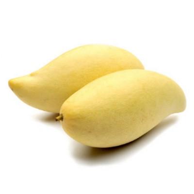 Mango Thai Waterlily (750G+-/PKT)