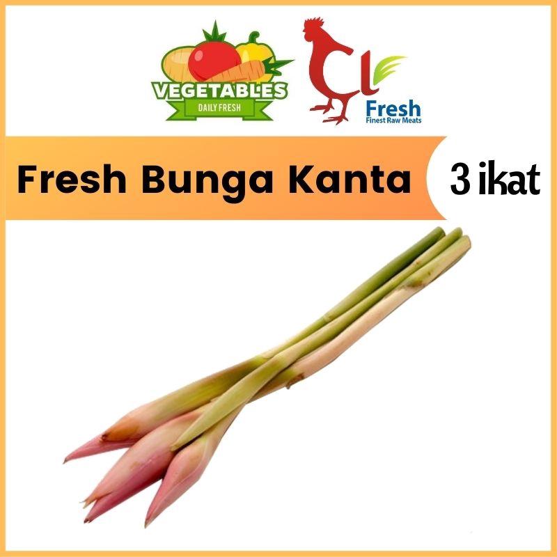 Fresh Bunga Kanta 3 NOS