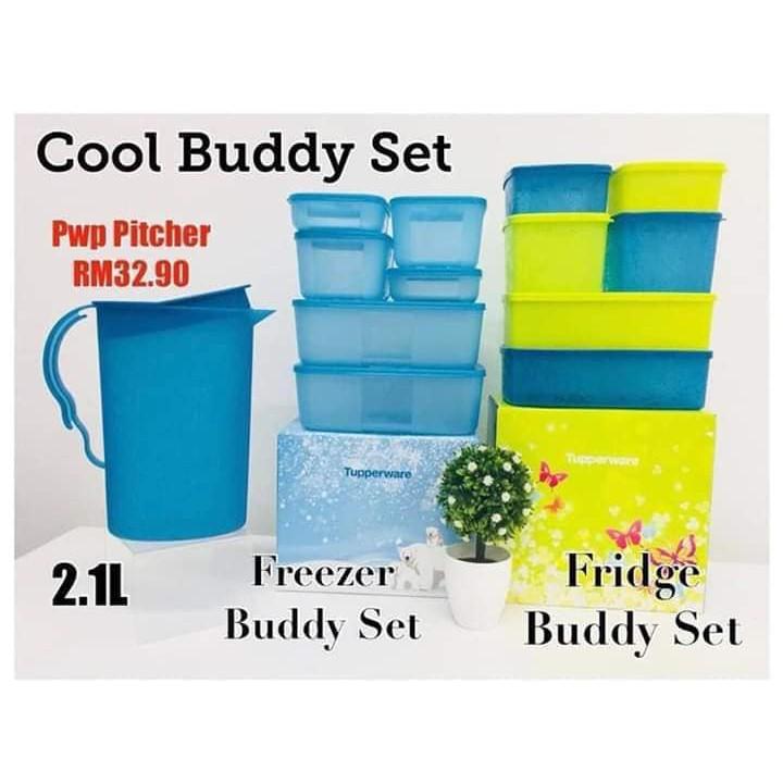 Tupperware Cool Buddy Set