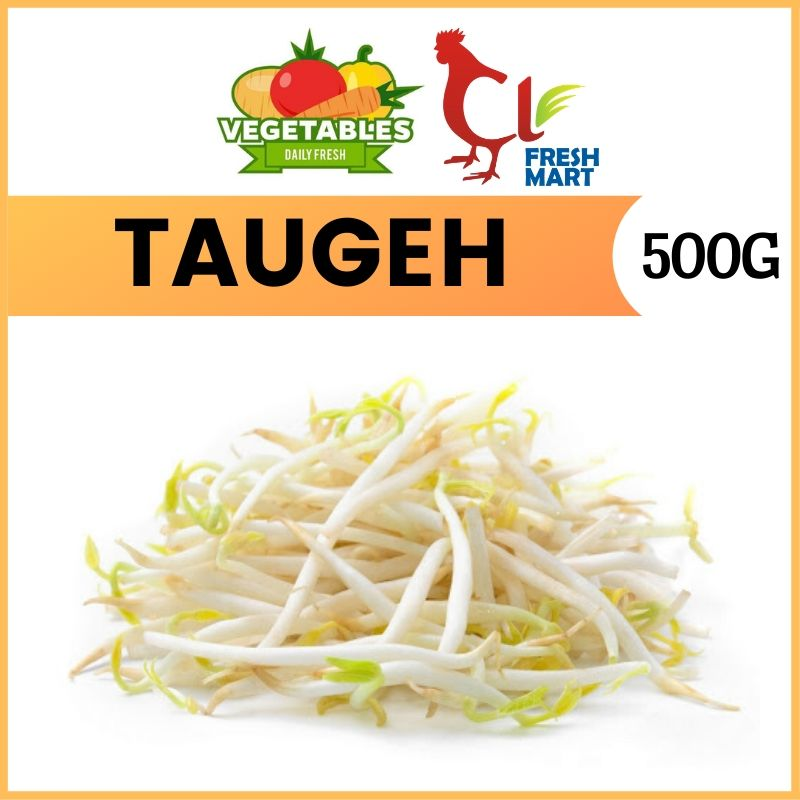Fresh Taugeh / Bean Sprout (500g)
