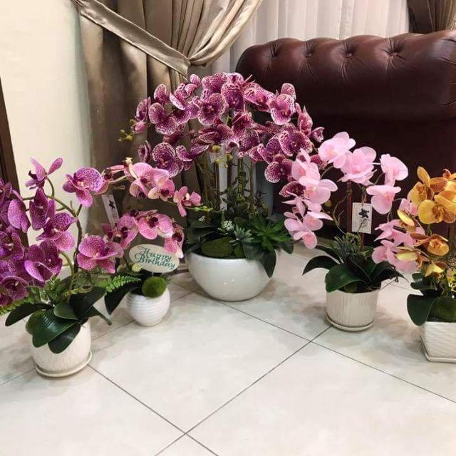 Lukisan Pokok Bunga Orkid Cikimm Com