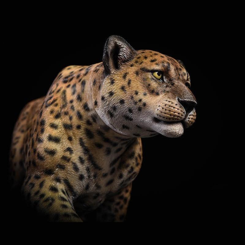 JXK JxK009A The Leopard Fluoresced Eyes Animal Resion 1//6 Action Figure