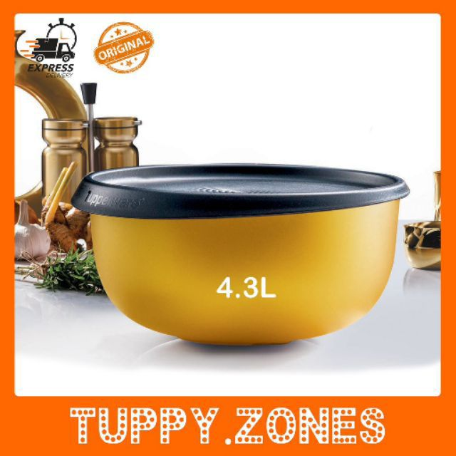 {LIMITED EDITION} Tupperware 55th Anniversary Bowl Set
