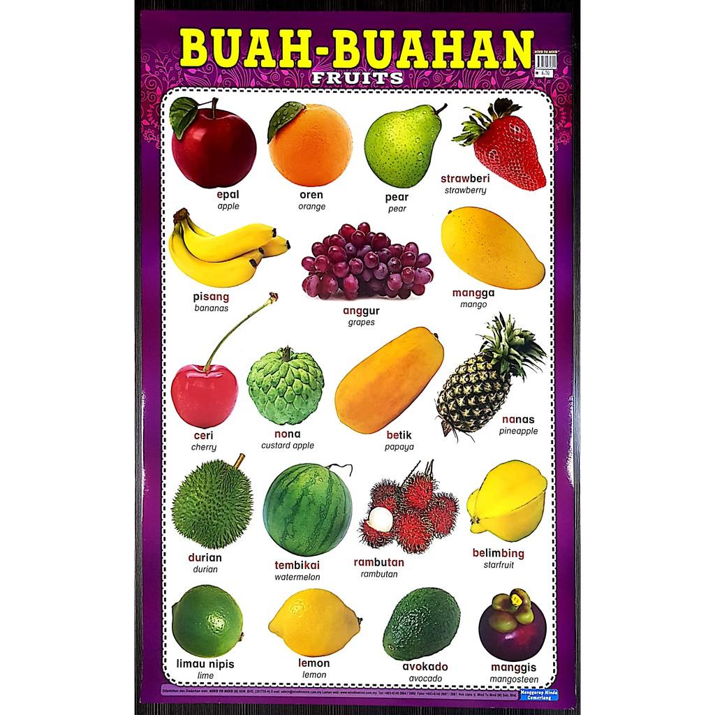 Poster Belajar Buah Buahan Fruits Mind To Mind Ready Stock D Shopee Malaysia