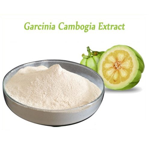 Garcinia Cambogia Hca Extract Powder 100g For Fat Loss Shopee